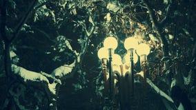 De lantaarn in het park bij nacht steekt ijzige boomtakken na ijsonweer in aan de winter stock videobeelden