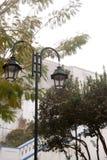 De lantaarn in mist in ochtend Royalty-vrije Stock Afbeelding