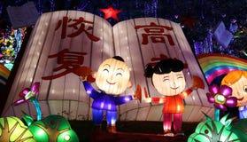 De lantaarn toont in zigong, China in 2014 Stock Fotografie