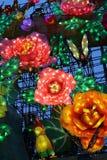 De lantaarn toont in zigong van Sichuan, China Royalty-vrije Stock Foto's