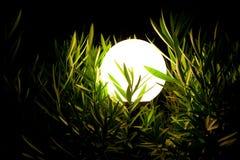De lantaarn van de nacht in een gras 2 Royalty-vrije Stock Foto