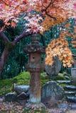 De lantaarn van de steen en dalingsgebladerte Royalty-vrije Stock Foto's
