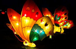 De lantaarn van de vlinder Stock Foto's