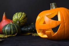De Lantaarn van Halloween Jack o, onder de herfstbladeren Royalty-vrije Stock Afbeelding