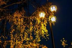 De lantaarn van de stadsstraat bij nacht tegen bewolkte hemel stock afbeeldingen