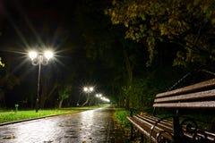 De lantaarnslampen van de parknacht: een mening van een steeggang, weg in een park met bomen en donkere hemel als achtergrond bij Stock Afbeeldingen