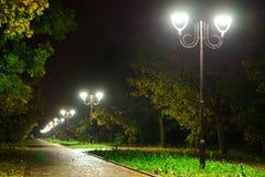 De lantaarnslampen van de parknacht: een mening van een steeggang, weg in een park met bomen en donkere hemel als achtergrond bij Stock Foto