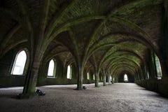 De las fuentes de la abadía arcos subterráneamente Imágenes de archivo libres de regalías