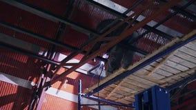 De lasser last grote metaalbouw in de hangaar stock footage