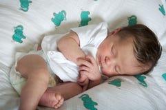 De Latijnse pasgeboren slaap van het babymeisje vreedzaam Royalty-vrije Stock Afbeeldingen
