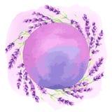 De lavendel bloeit achtergrondontwerp Royalty-vrije Stock Fotografie