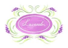 De lavendel bloeit achtergrondontwerp Stock Afbeeldingen