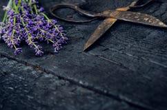 De lavendel bloeit, rozemarijn, munt, thyme, melissa met oude schaar op een zwarte houten lijst Gebrand Hout Kuuroord en schoonhe Stock Fotografie