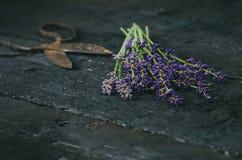 De lavendel bloeit, rozemarijn, munt, thyme, melissa met oude schaar op een zwarte houten lijst Gebrand Hout Kuuroord en schoonhe Royalty-vrije Stock Fotografie