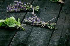 De lavendel bloeit, rozemarijn, munt, thyme, melissa met oude schaar op een zwarte houten lijst Gebrand Hout Kuuroord en schoonhe Royalty-vrije Stock Afbeeldingen