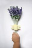 De lavendel van de de handholding van het jonge geitje Stock Foto