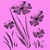 De lavendel van de tuin Royalty-vrije Stock Foto