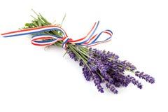 De lavendel van takjes met lint Royalty-vrije Stock Afbeelding