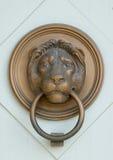 De leeuw bas-hulp van het brons met ring Stock Foto's