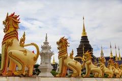 De leeuw bij wat banden tempel Royalty-vrije Stock Foto