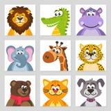 De leeuw, krokodillekrokodil, nijlpaard, olifant, giraf, luipaard, draagt, kat, hond vector illustratie