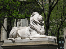 De Leeuw van de Stad van New York Stock Afbeelding