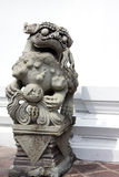 De leeuw van de Steen stock foto's