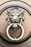 De leeuw van deurkloppers Royalty-vrije Stock Foto