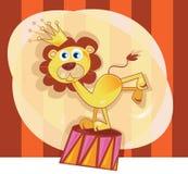 De leeuw van het circus Stock Afbeeldingen