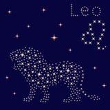 De Leeuw van het dierenriemteken op de sterrige hemel stock illustratie