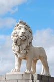 De leeuw van Southbank Royalty-vrije Stock Foto's