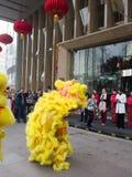 De leeuwdans, neemt aan de viering van Chinees Nieuwjaar deel Royalty-vrije Stock Fotografie