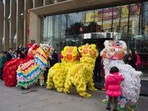 De leeuwdans, neemt aan de viering van Chinees Nieuwjaar deel Royalty-vrije Stock Afbeelding