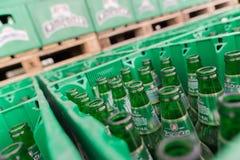 De lege bierflessen aranged in pakken in de partij van de brouwerijopslag Royalty-vrije Stock Afbeeldingen