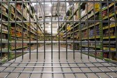 De lege het Winkelen Kar van het Karretje Stock Fotografie