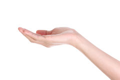De lege holding van de mensenhand Stock Foto