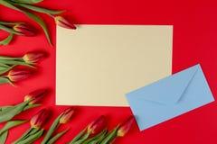 De lege kaart, de blauwe envelop en de de rode lentetulpen bloeien op rode achtergrond royalty-vrije stock afbeeldingen