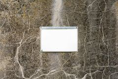 De lege, schone plaat maakte aan de oude concrete muur, spatie voor ontwerpers vast royalty-vrije stock foto