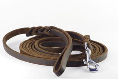 De leiband van de hond royalty-vrije stock afbeelding