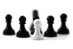 De Leiding van het schaak Stock Afbeeldingen