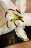 De lelie van Pasen op Bijbel Royalty-vrije Stock Foto