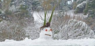 De lelijke sneeuw pupped Stock Afbeeldingen