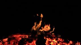De lengte van de huisstijl Geen geluid Twintig 20 die seconden van sintels van een vuur worden bewogen aan kleine vlammen wordt g
