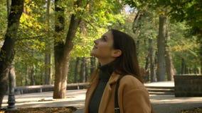 De lengte van lopende schitterende Kaukasische vrouw is groen aardig park in sunshines die, die bomen bekijken en van aardig weer stock videobeelden
