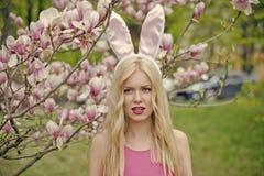 De lente, aard en milieu royalty-vrije stock afbeeldingen