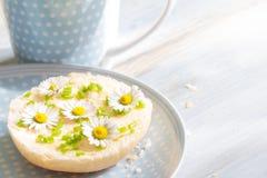 De lente abstract ontbijt met sandwich en madeliefjes Stock Fotografie