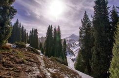 De lente in de bergen royalty-vrije stock foto's