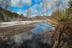 De lente bij de rivier Royalty-vrije Stock Afbeelding