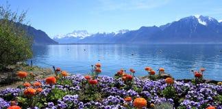 De lente bij het meer van Genève, Montreux, Zwitserland Stock Fotografie