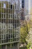 De lente binnen de stad in Stock Afbeelding